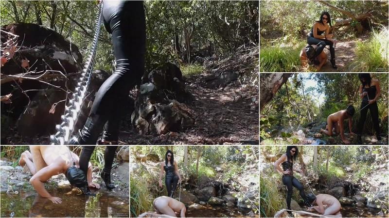 Woodlands Slave Trail [FullHD 1080P]