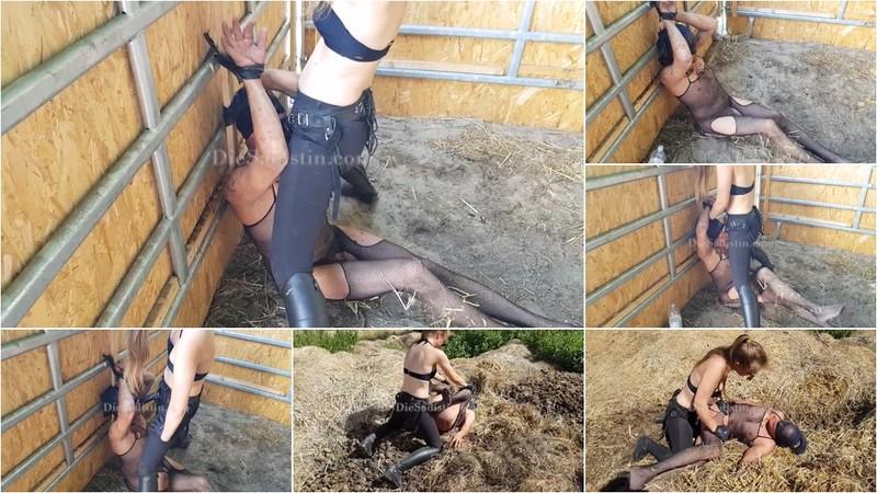 Von Der Pferdebox In Den Misthaufen. Dreckige Sta(H)Llnutte Vanessa Part 3 Of 3 [FullHD 1080P]