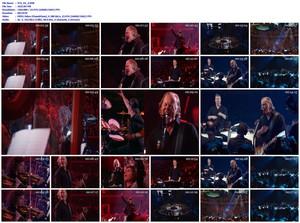 Metallica & The San Francisco Symphony - S&M2 (2020) [DVD9]