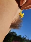 Milena - Mountain Flower (2020-09-07)
