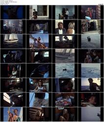 Der Skipper (1990)