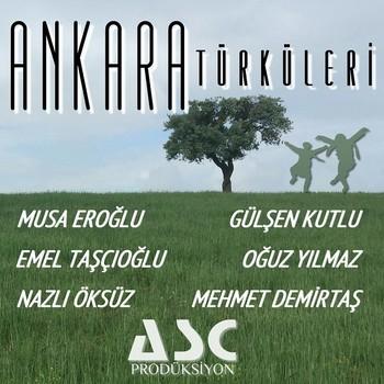 Çeşitli Sanatçılar - Ankara Türküleri (2020) Full Albüm İndir