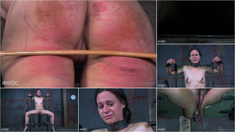 Sister Dee - The Submission of 314 Part Three [SD 478p]
