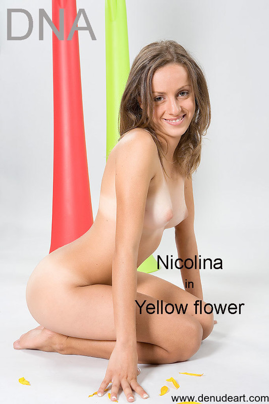 Nicolina Yellow Flower (24-12-2020)