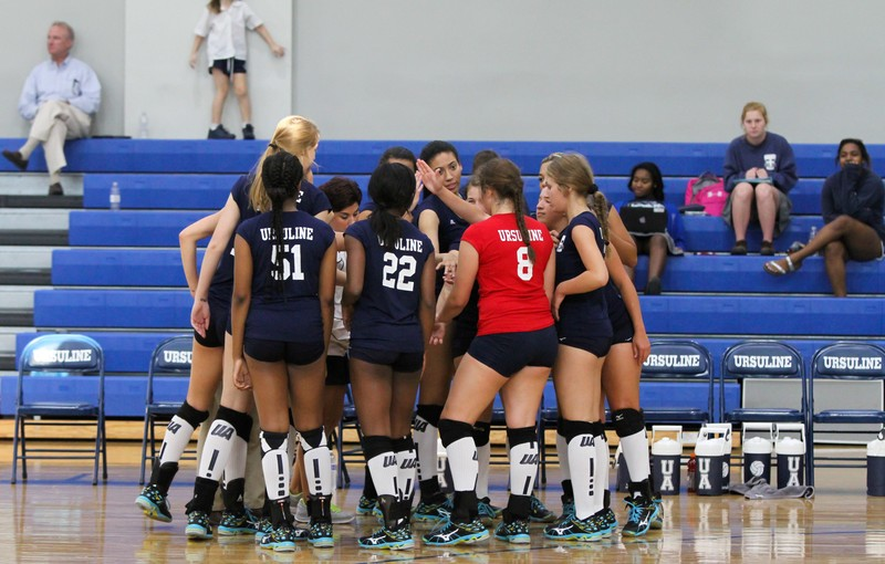 college volleyball girls in perfect spandex shorts