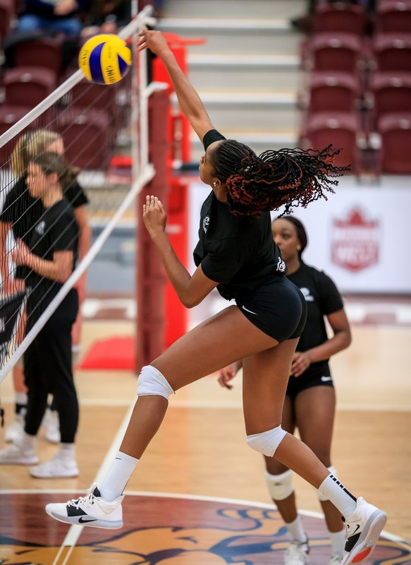 gorgeous volleyball team in tight lycra shorts