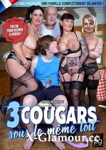 Amateurs - 3 Cougars Sous Le Mme Toit [HD/720p]