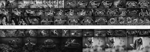 [ArtOfDan] Joy Lamore - Autumn Passion 1612195235_000026