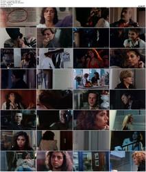 La busqueda (1985)