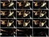 8mnvu5xp9tdp - v93 - 60 videos