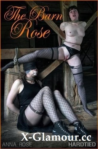 The Barn Rose [SD]