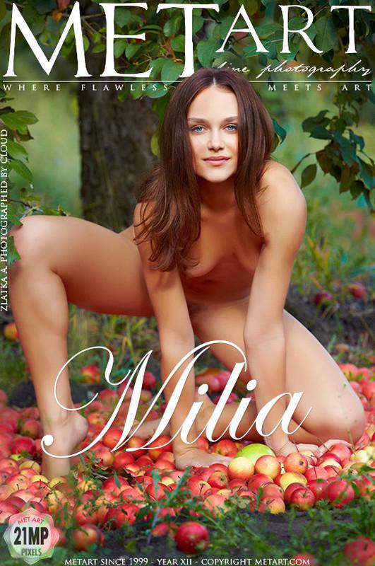 Zlatka A - Milia (x120)