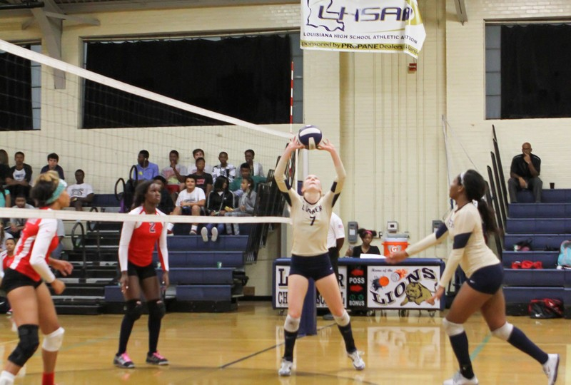 college volleyball team in tight spandex shorts