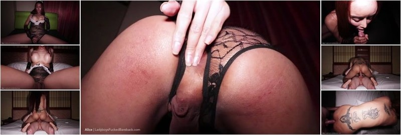 Alice 2 - Black Bunny Pushed - in Creampie (HD)